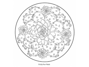 12/16 A Gift for You: Coloring Download from The Desert Mandalas Coloring Book